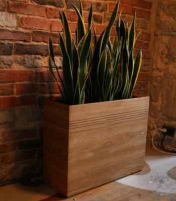 Tamme lillekastid | osta Stragendis internetipood: hinnad, spetsifikatsioonid